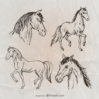 Cavalos embalar