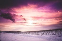 Céu roxo bonito