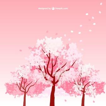 Cereja árvores da flor