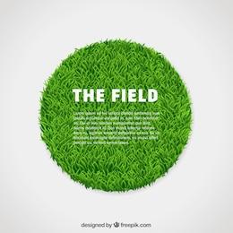 Círculo de grama verde