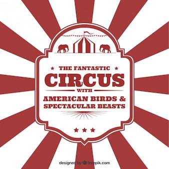 Circus panfleto no estilo do vintage
