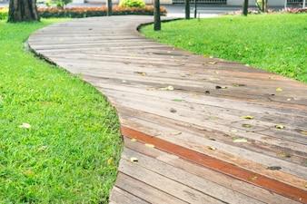 Close-up trajeto de madeira com folhas secas