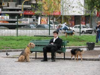 Cão eo homem