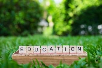 Conceito de educação