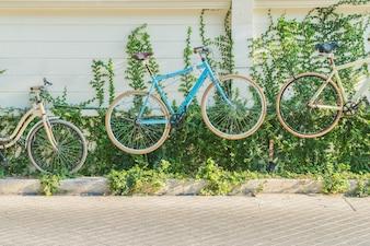 Decoração de bicicleta na parede