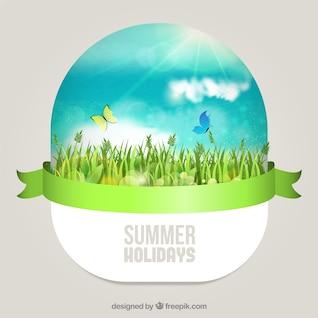 Dia ensolarado de verão no gramado