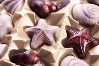 Diferentes tipos de chocolates