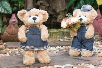 Dois, ursinho, ursos, jardim, fundo