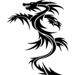 dragão vetor de 4