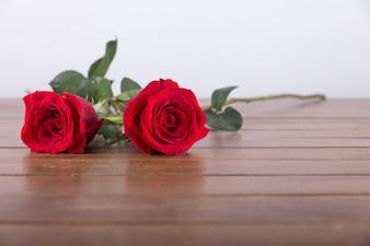 Duas belas rosas vermelhas