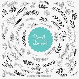 Elementos decorativos florais
