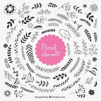 Elementos florais esboçado