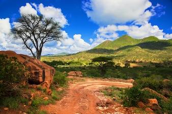 Estrada de terra com montanhas verdes