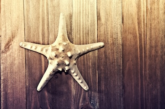 Estrela-do-mar no fundo de madeira.