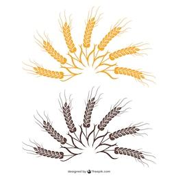 Fã de trigo vetor
