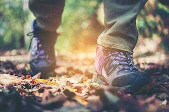 Feche os pés da mulher da aventura andando no caminho da montanha.