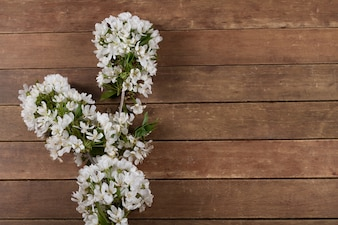 Flor branca em fundo de madeira