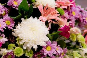 Flor de Rosa no casamento