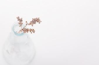 Flores secas em um vaso