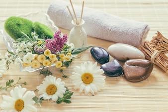 Flores, vasos e pedras
