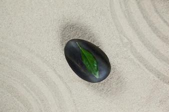 Folha na pedra seixo preto