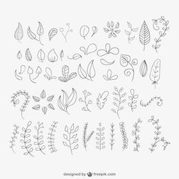 Folhas desenhadas mão embalar