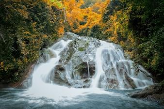 """Foto bonita da paisagem da cachoeira na floresta tropical nomeada """"chapéu de Mae"""" na província de Chiang Mai, Tailândia. Foco suave e seletivo com tom escuro processado. A licença de laranja parecia um tom de outono."""
