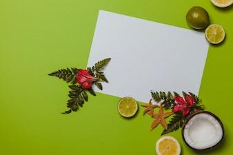 Frutas de verão e plantas exóticas