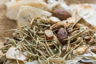 Frutas ervas ingredientes sementes naturais pinheiro