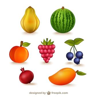 Frutas ilustrações embalar