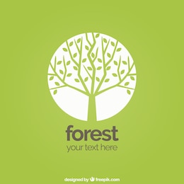 Fundo da floresta