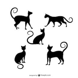 Gatos de vetores silhuetas pacote