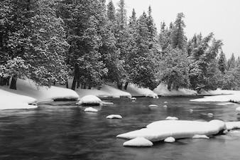 Gelo no rio