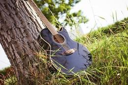 Guitarra na natureza