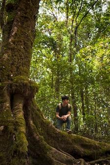 Hiker, posar, logo, enorme, árvore