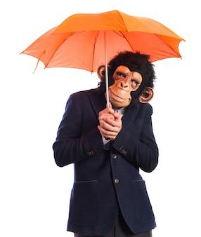 Homem macaco segurando um guarda-chuva