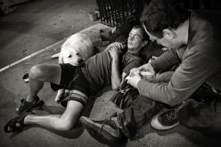Homens sem-teto com cão