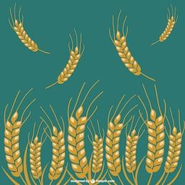 ícones do vetor safra de trigo