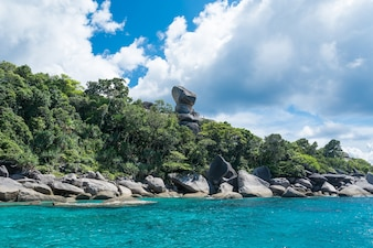 Ilha tropical do seascape da natureza do verão