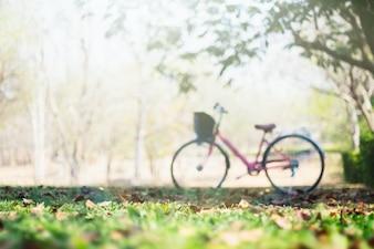 Imagem de paisagem Bicicleta vintage com campo de grama de verão