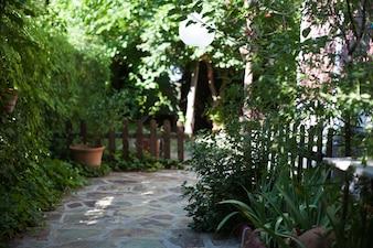 Jardim à luz do dia