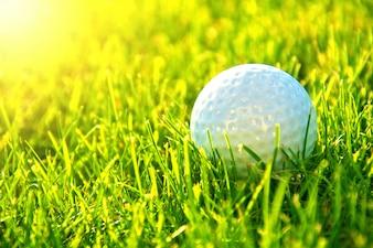 Jogo de golfe.