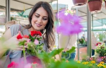 Jovem, mulher, segurando, gerânio, argila, pote, jardim, centro Jovem mulher que compra flores no mercado de jardim