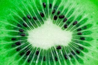 Kiwi fatia macro delicioso