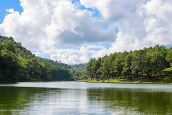Lago com árvores nas laterais