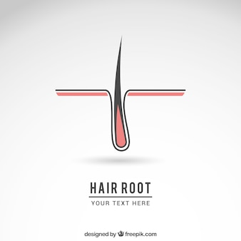 Logotipo raiz do cabelo