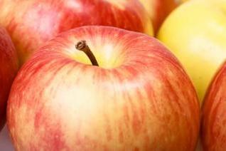 maçãs orgânicas