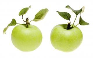 maçãs verdes, saudáveis
