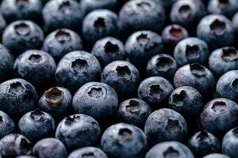 Macro Closeup of Fresh Tasty Blueberry Berry. Comida de verão. Conceito da Vida Saudável Alimentada.