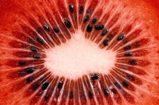 Macro fatia vermelho kiwi